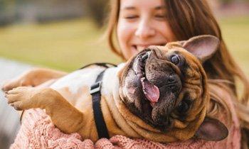 Pet's Positive Powers