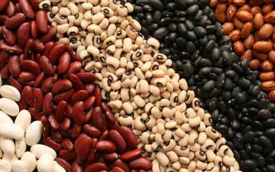 Beans… The Magical Fruit